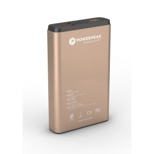PowerPeak 10000mAh PD Fast Charge Portable Charger Dual USB- Gold